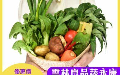 防疫大作戰雲林良品守護你健康  蔬永康居家防疫蔬菜箱線上開賣