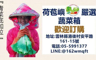 雲林縣政府農業處輔導荷苞嶼嚴選裸裝蔬菜箱  民以食為天 疫起吃蔬菜